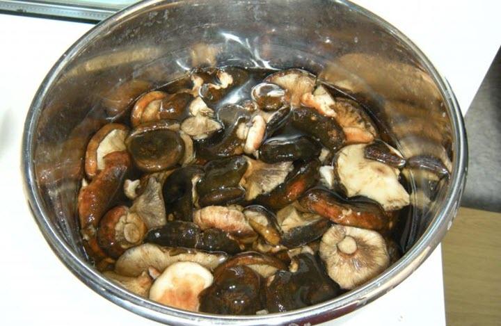 Черные грузди рецепт засолки с фото