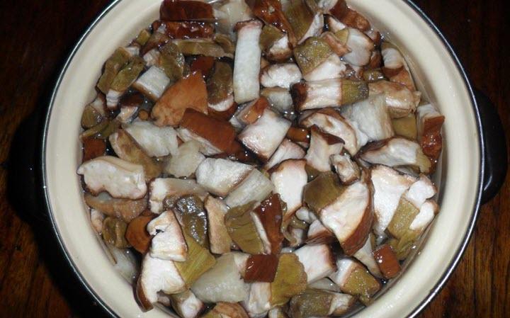 Белые грибы для супа
