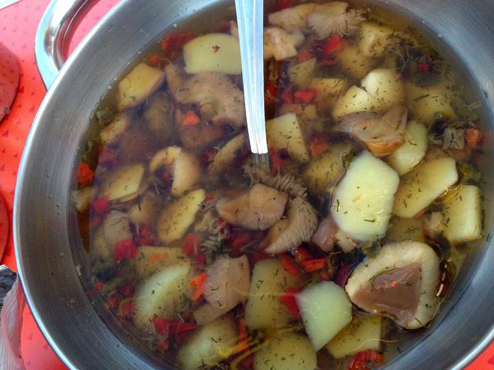 Варка супа из маслят