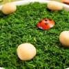 Удивите гостей салатом грибная поляна