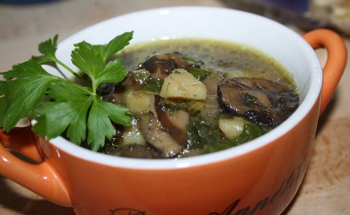Грибной суп из свежих грибов с рисом рецепт с фото