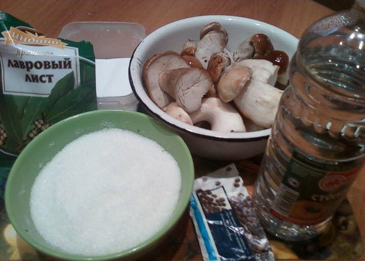 белый гриб засолка