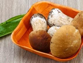 Белые грибы для маринования